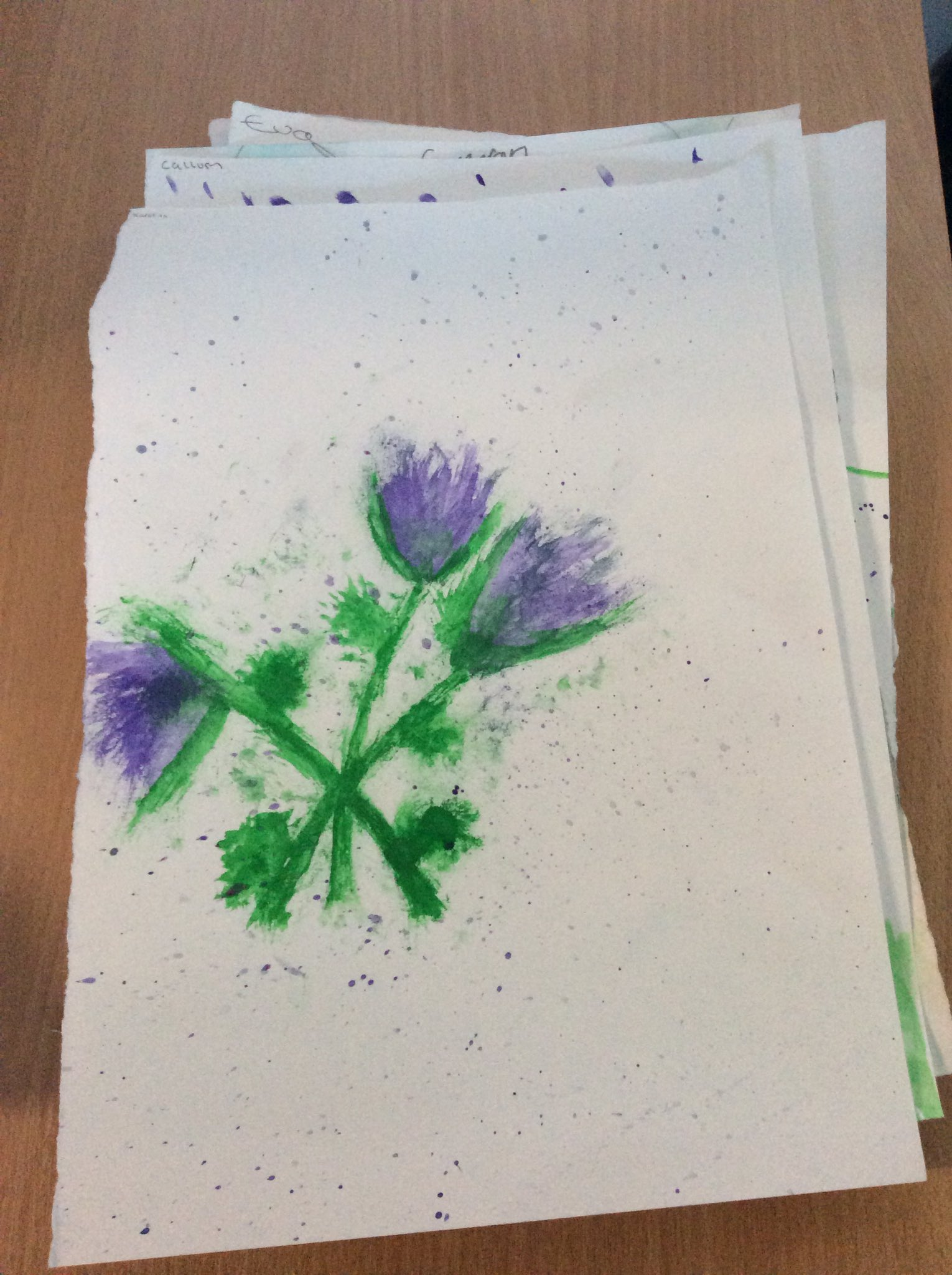 More of P7s thistles today #StAndrewsDay2017 https://t.co/HYlBtduZGb