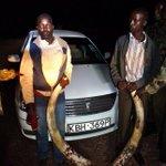 Two men get life sentence or Sh20m fine over ivory trafficking