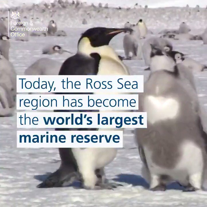 On this day in 1959 the UK was one of the first to pledge to protect Antarctica.  Today, the Ross Sea has become the world's largest marine reserve https://t.co/Qod0H4VDhB