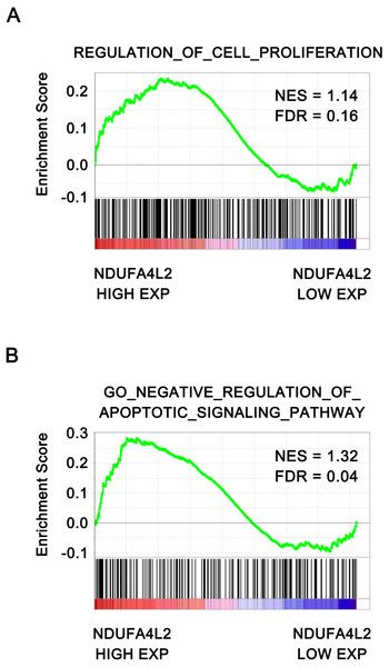 test Twitter Media - NDUFA4L2 is associated with clear cell renal cell carcinoma malignancy and is regulated by ELK1 https://t.co/QBGH2gaZ6W https://t.co/Ycq2Y9lLPc