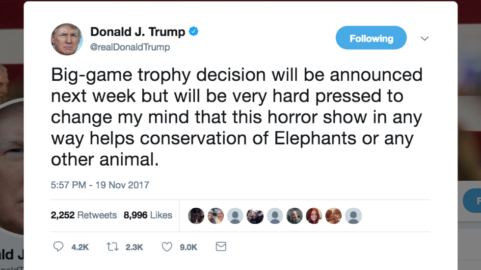 Trump on elephant trophies: How does this 'horror show' help the conservation of elephants? https://t.co/JIpLYFTm9g https://t.co/O3R51lUDgT