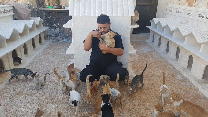Wie helpt de kattenman van Aleppo? https://t.co/ibzUXECpig https://t.co/yvWfZBSkGP