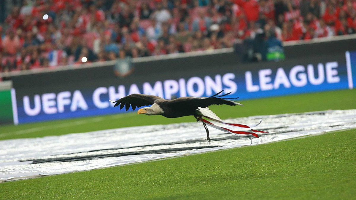slbenfica_en us moscow