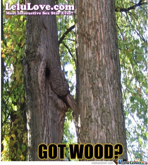 Got wood?? :) (get some more here: https://t.co/tBL1A3T0O9 ) Funny Pic: https://t.co/db2d16CMVa