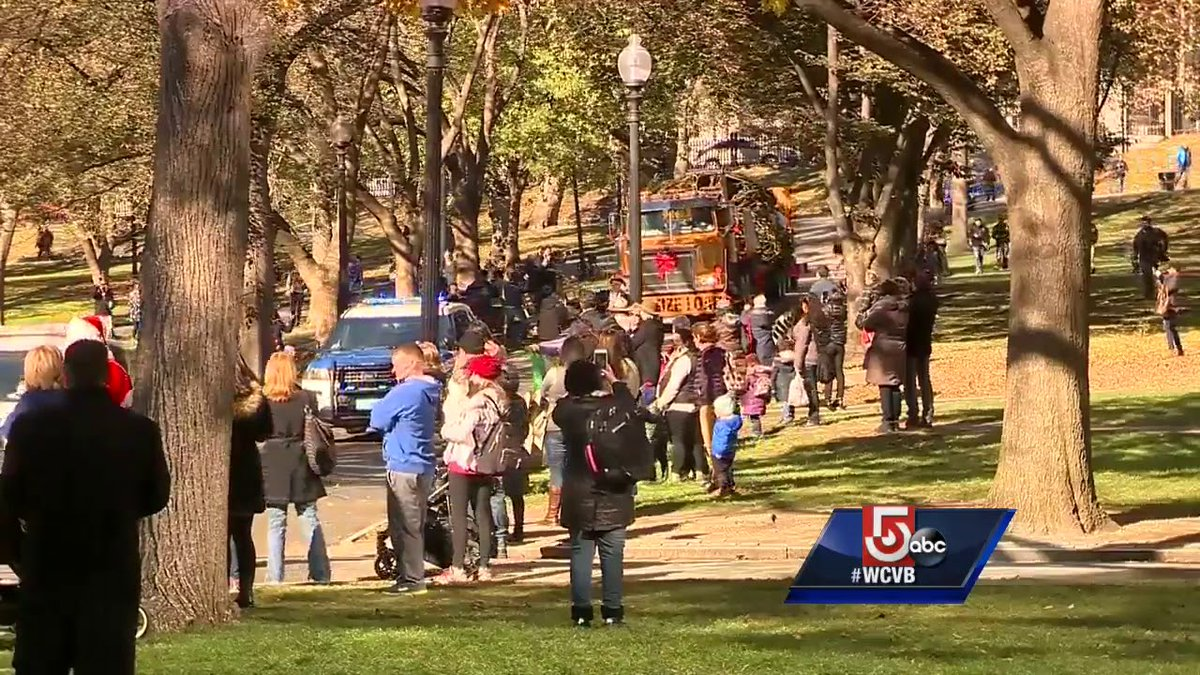 Boston's official Christmas tree is here