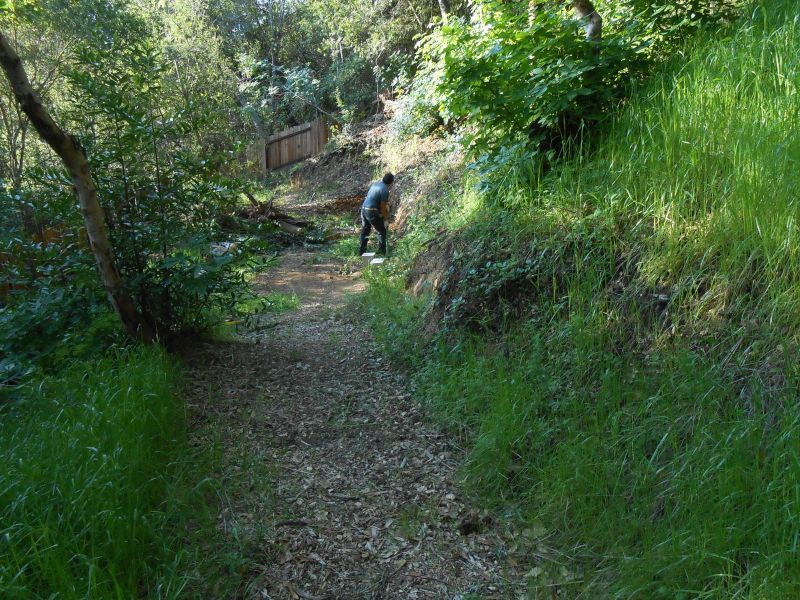 test Twitter Media - If you need help right now with #HillCleaning and #BrushClearing in #NapaCounty and #SonomaCounty we'll be happy to help! =) https://t.co/ALbX3cqbE4