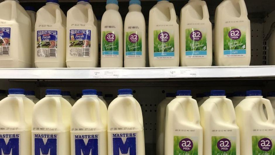 What is A2 milk and what are its claimed benefits?