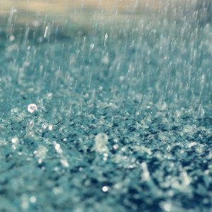 Rain in Cape Town has everyone celebrating