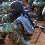 U.S. says air strike kills over 100 militants in Somalia