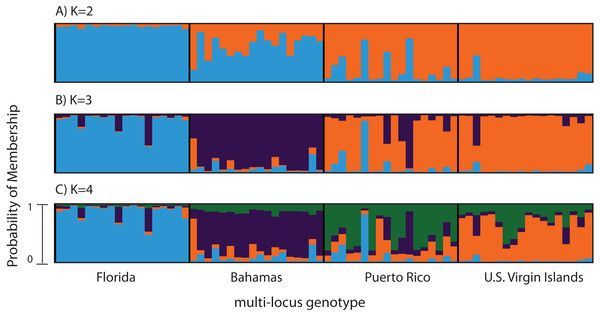 test Twitter Media - Genome-wide survey of single-nucleotide polymorphisms reveals fine-scale population structure and signs of selection in the threatened Caribbean elkhorn coral https://t.co/RwR4gUeRiu https://t.co/NPkr9d9p6Z