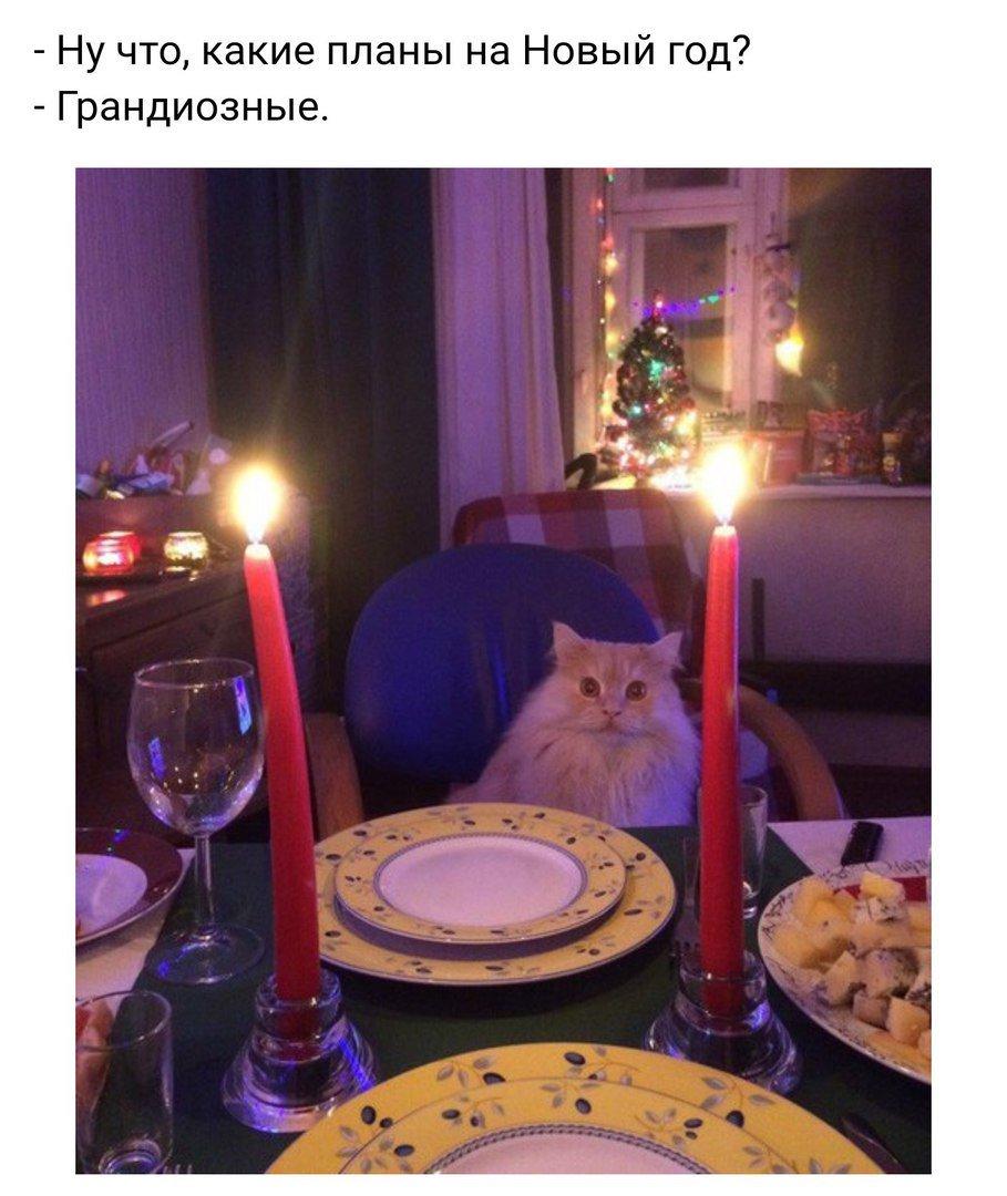 На новый год какие планы есть