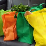 The public health risks of increased use of reusable shopping bags