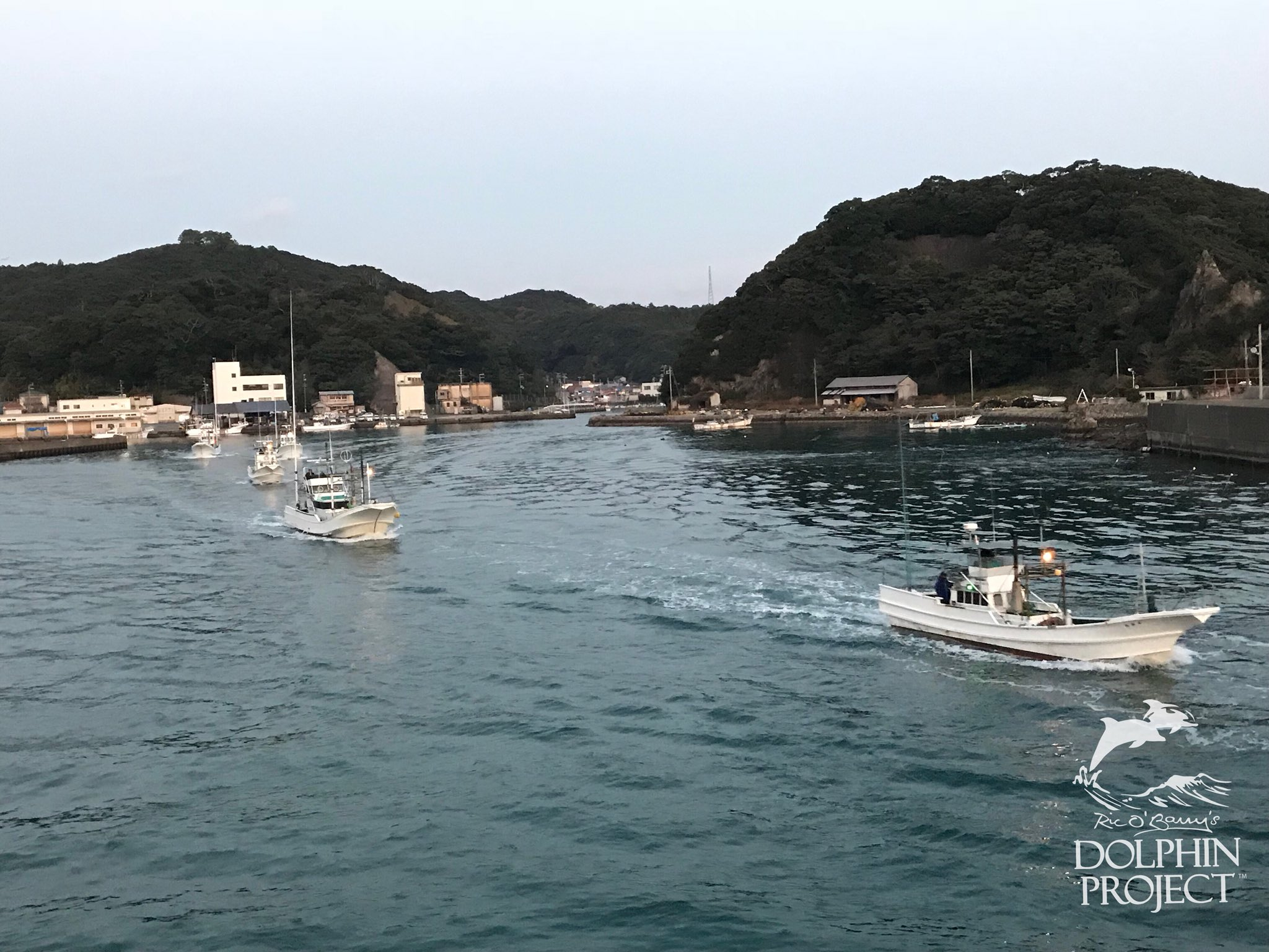 Taiji: All 12 banger boats are headed out to sea this morning to hunt for dolphins. 11-25-17 6:27am #dolphinproject https://t.co/cHZp3RJTaI