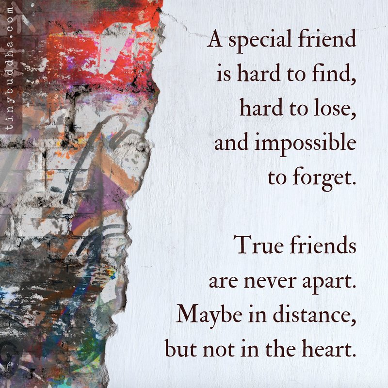 a good friend is hard to find