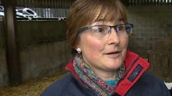 Abergavenny farmer on 'huge impact' of TB in cattle