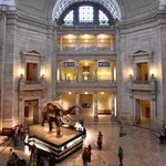 The Best Indoor Activities & Things to Do in Washington, DC