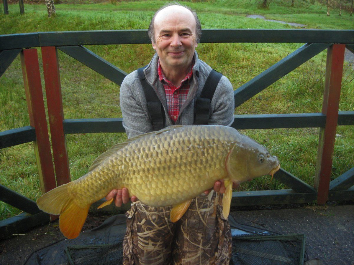 FREE REWARD WEEK + 2 TWENTIES = HAPPY DAYS!! #carpfishing #mirrorcarp #commoncarp https://t.co/y4UmG