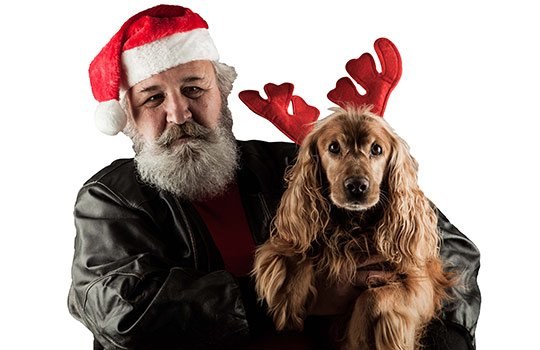 test Twitter Media - Owning a pet does not appear to slow the rate of ageing, as measured by standard indicators, finds study #BMJChristmas https://t.co/i24JppQJXr https://t.co/KjWAr7VoBJ