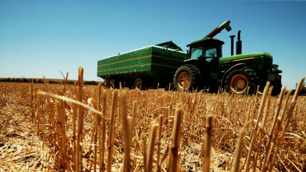 Dry conditions, then frosts hit farm production and exports