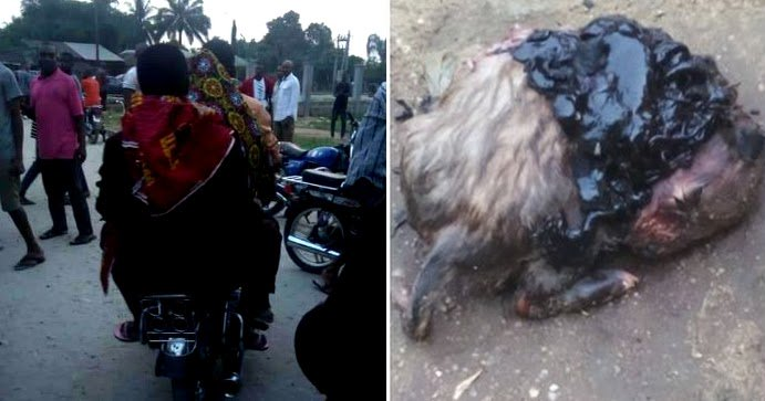 Photos: Nigerian Woman Pregnant For 3 Years Gave Birth To A Dog In Rivers State! https://t.co/qnxhSPPHaw https://t.co/2xdcD9lCXF