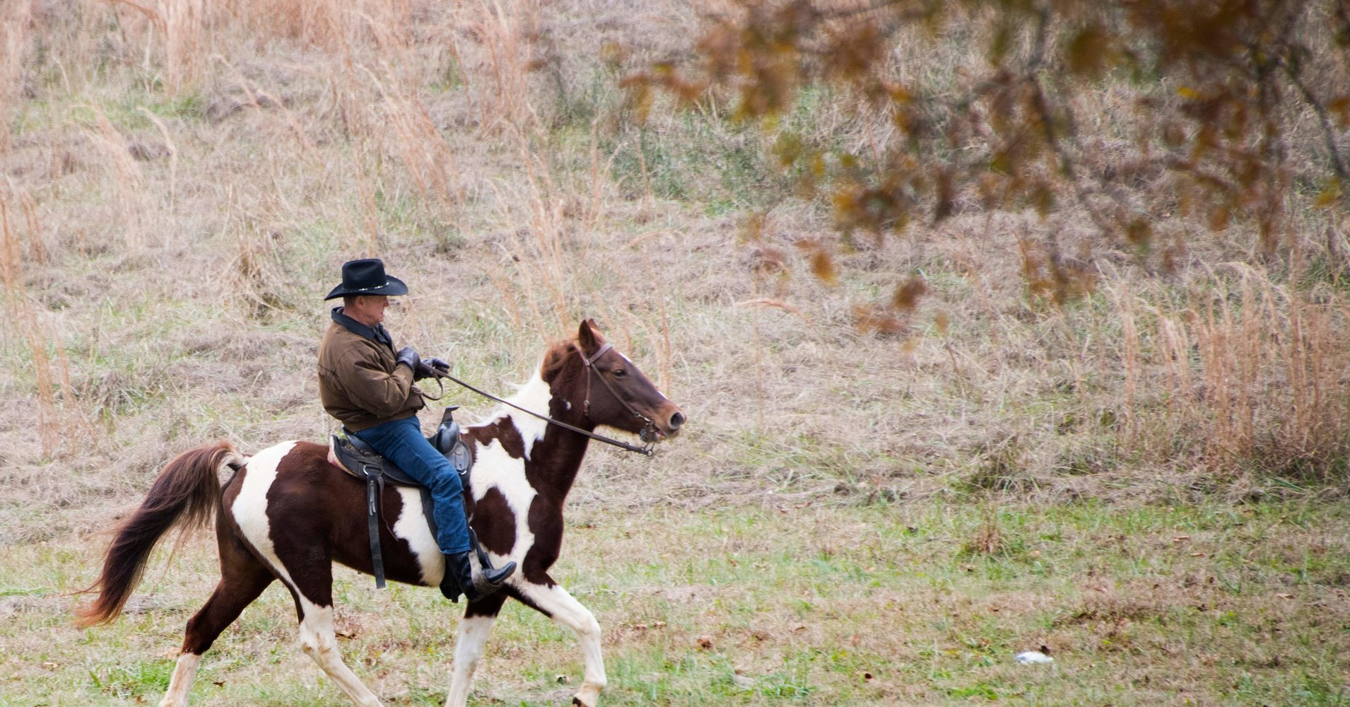 Roy Moore rode in to vote on a horse named 'Sassy' https://t.co/cF5aPjORX4 https://t.co/68EZAaiSa7