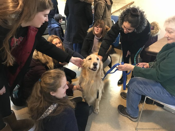 RT @deneenknews: Therapy dogs visit Carthage College as students prep for finals week @Kenosha_News https://t.co/oj9JRtRPHi