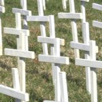 Hundreds of crosses mark each St. Louis area murder in dramatic churchdisplay