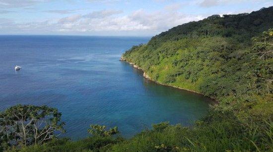 American tourist killed in Costa Rica shark attack
