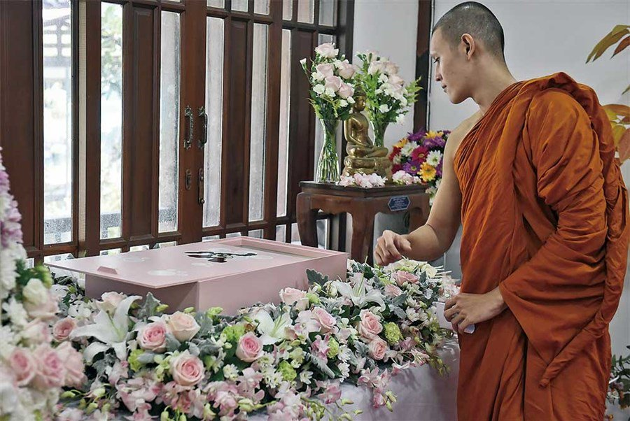 Buddhist pet cremations rising in Bangkok