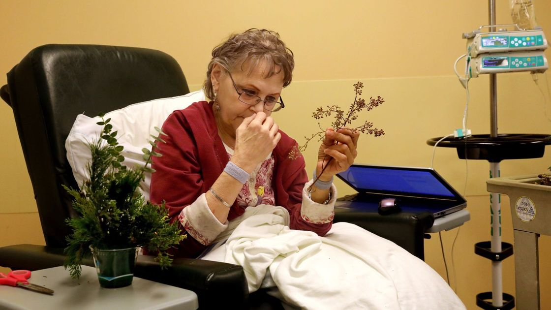Working and playing with plants helps St. Louisans cope with illness, disabilities