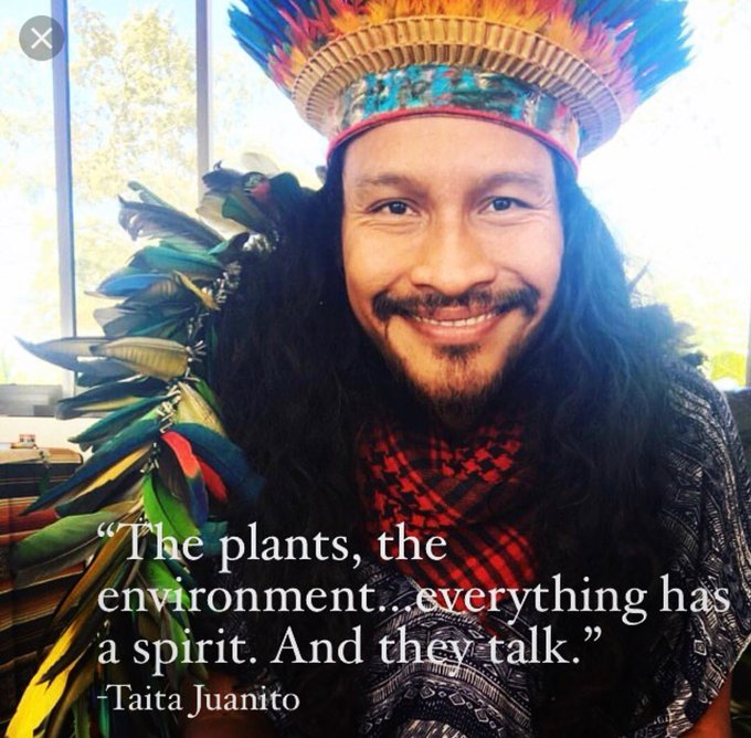 """""""The plants, the environment...everything has a spirit and they Talk""""- Taita Juanito   We just have to"""