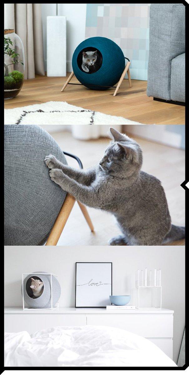 【BOICE】 《MEYOU》ネコ好き必見!! ネコとオシャレに暮らすために作られたキャットハウスが届きました。これは、うれしいニャ!  https://t.co/vYUoUolTZJ https://t.co/ilmPvyjqWQ