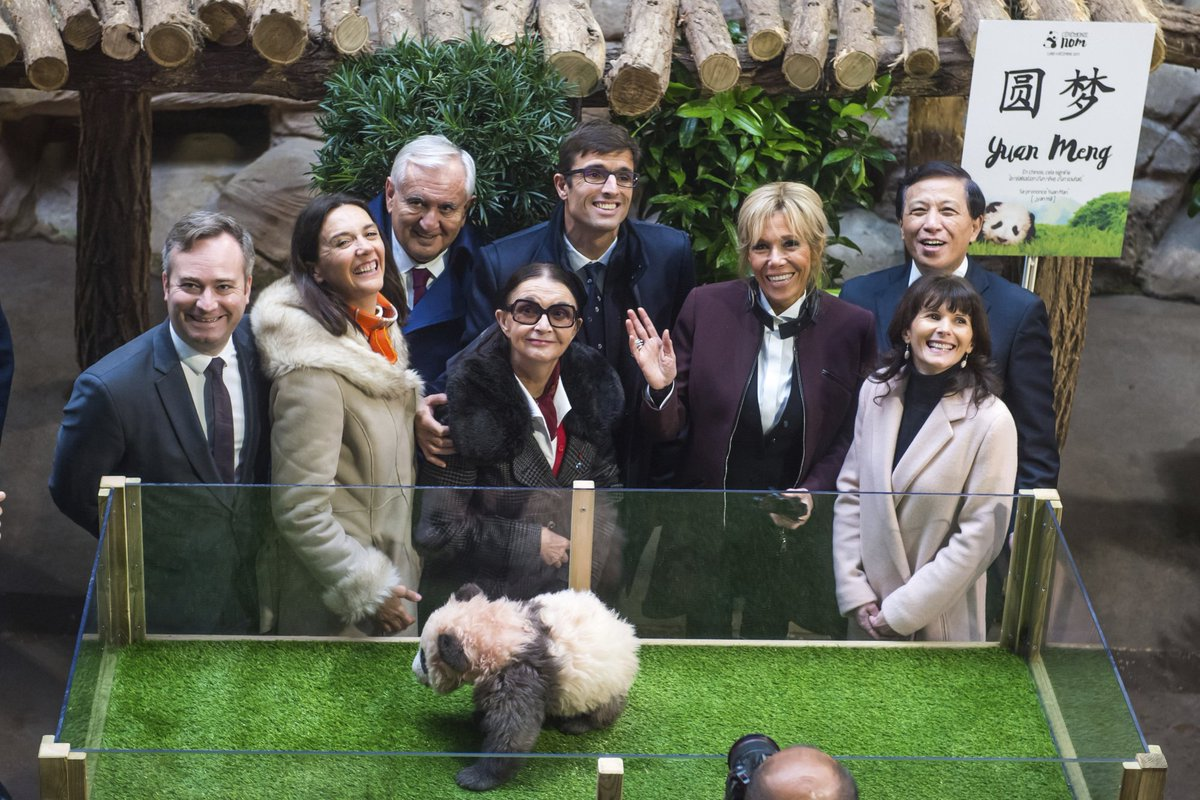 First lady, China bestow name on France's new panda cub