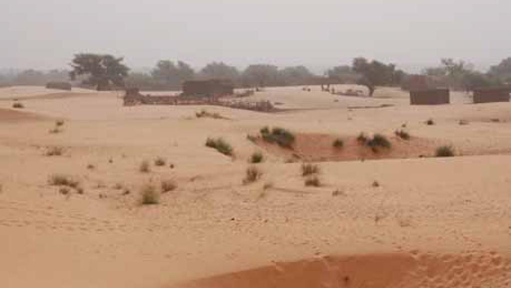Bénin: un sommet sur les enjeux alimentaires au Sahel et en Afrique de l'Ouest