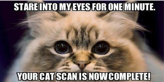 You're cat scan is now complete.... https://t.co/Pq6cM1LWlu
