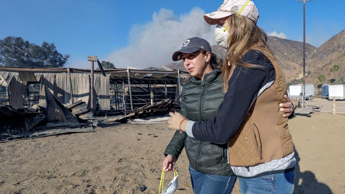 Nearly 30 horses were found burned to death by Creek fire in Sylmar https://t.co/DQpKkfQE5r https://t.co/XRuQ849Gxx