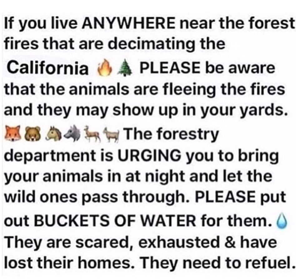RT @NickyHilton: Note to #CaliforniaFires residents https://t.co/DNgD5nYAqU