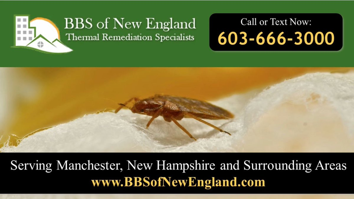test Twitter Media - Check out this video to learn more about our bed bug control services and how we can help YOU! https://t.co/IAX9LGUOo2 https://t.co/OIr5bc6XSy