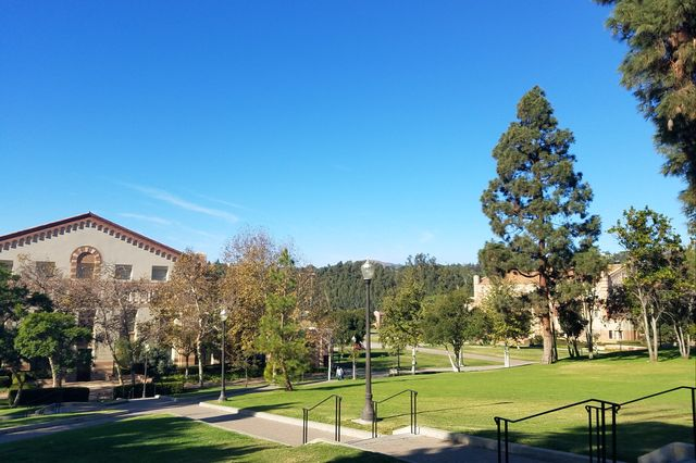RT @UCLAnewsroom: What's open and closed at UCLA today. https://t.co/PFEuKyCYC9 https://t.co/tsv2NM8Viw