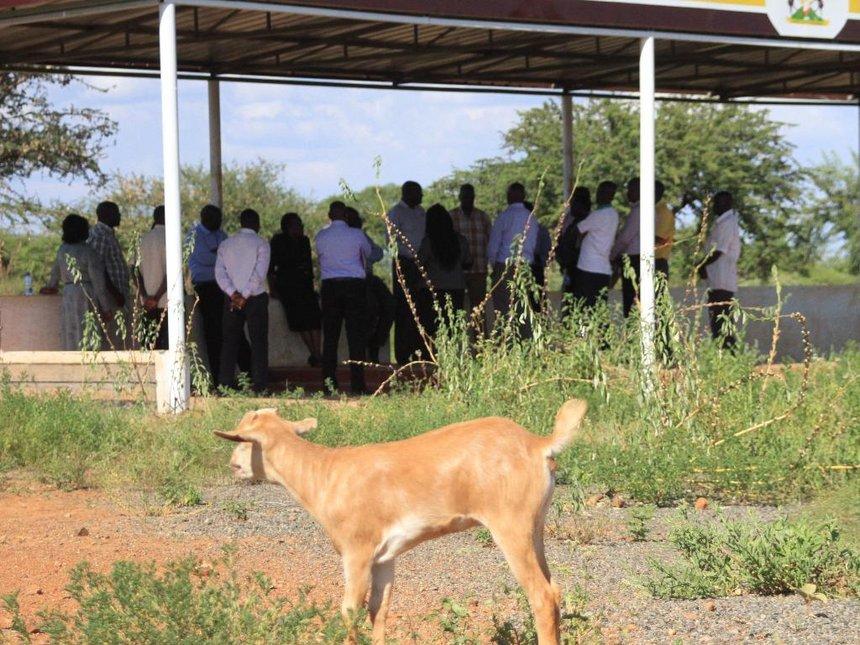Uhuru, DP Ruto invited to grace Baringo Kimalel goat auction