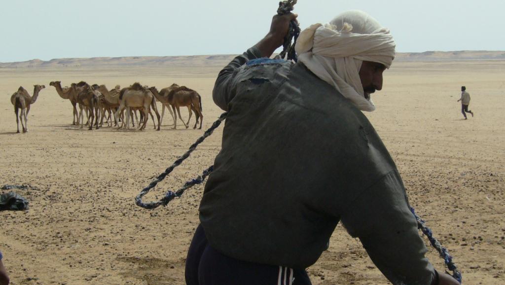 trop de préjugés à l'encontre des éleveurs nomades