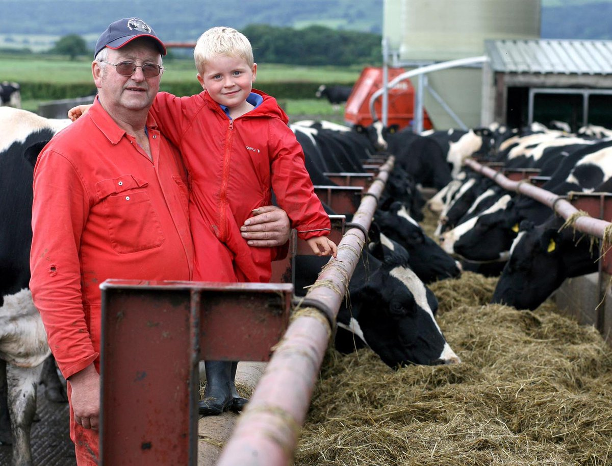 Dairy farmer crushed to death by his own cattle