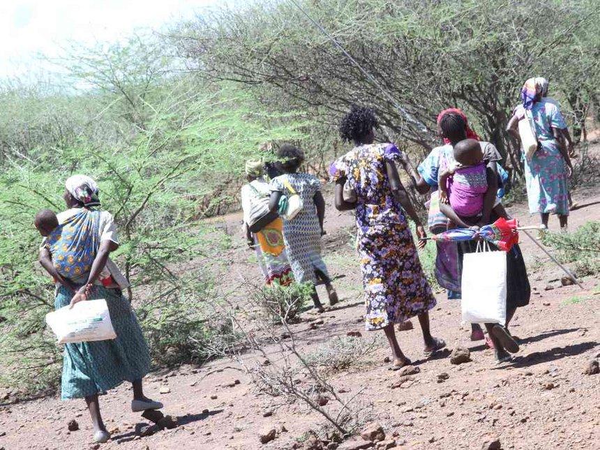 Fierce Pokot bandits attack Baringo North, steal 38 cows