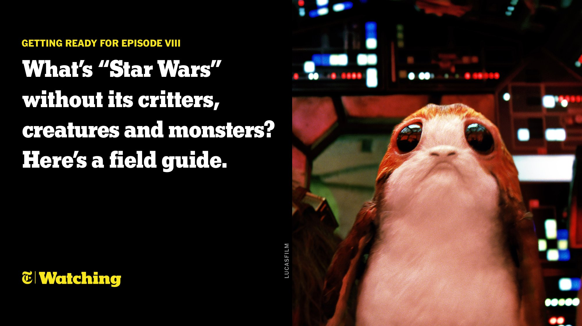 "Porgs are the ""Star Wars"" version of puffins and baby porgs are called porglets https://t.co/aoHMm8wAeR https://t.co/XeM5eiO23U"