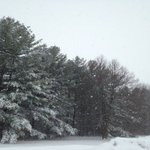 Dry weather this weekend after light snow Friday night
