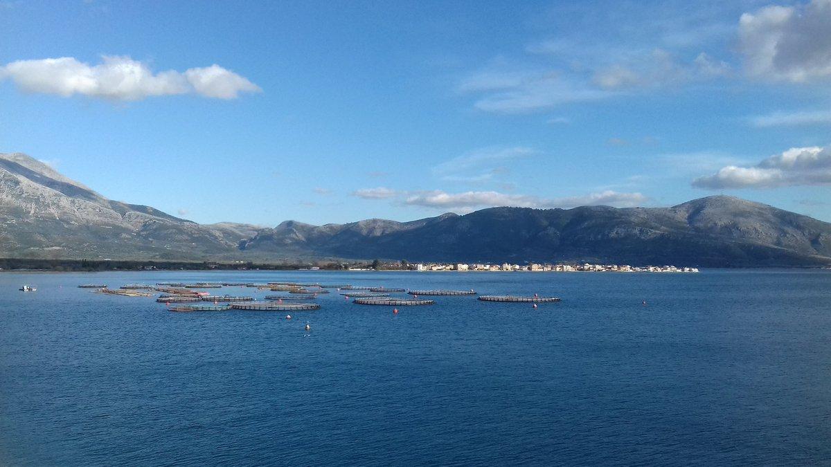 Aquaculture sur la côte grecque : ce soir poisson ? / Fish farming on greek coast: fish tonight?
