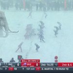 SPOTTED: Woolly Mammoth on field in Buffalo *scre...