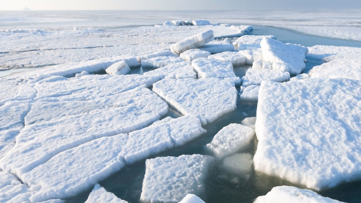 How a Wayward Arctic Current Could Cool the Climate in Europe
