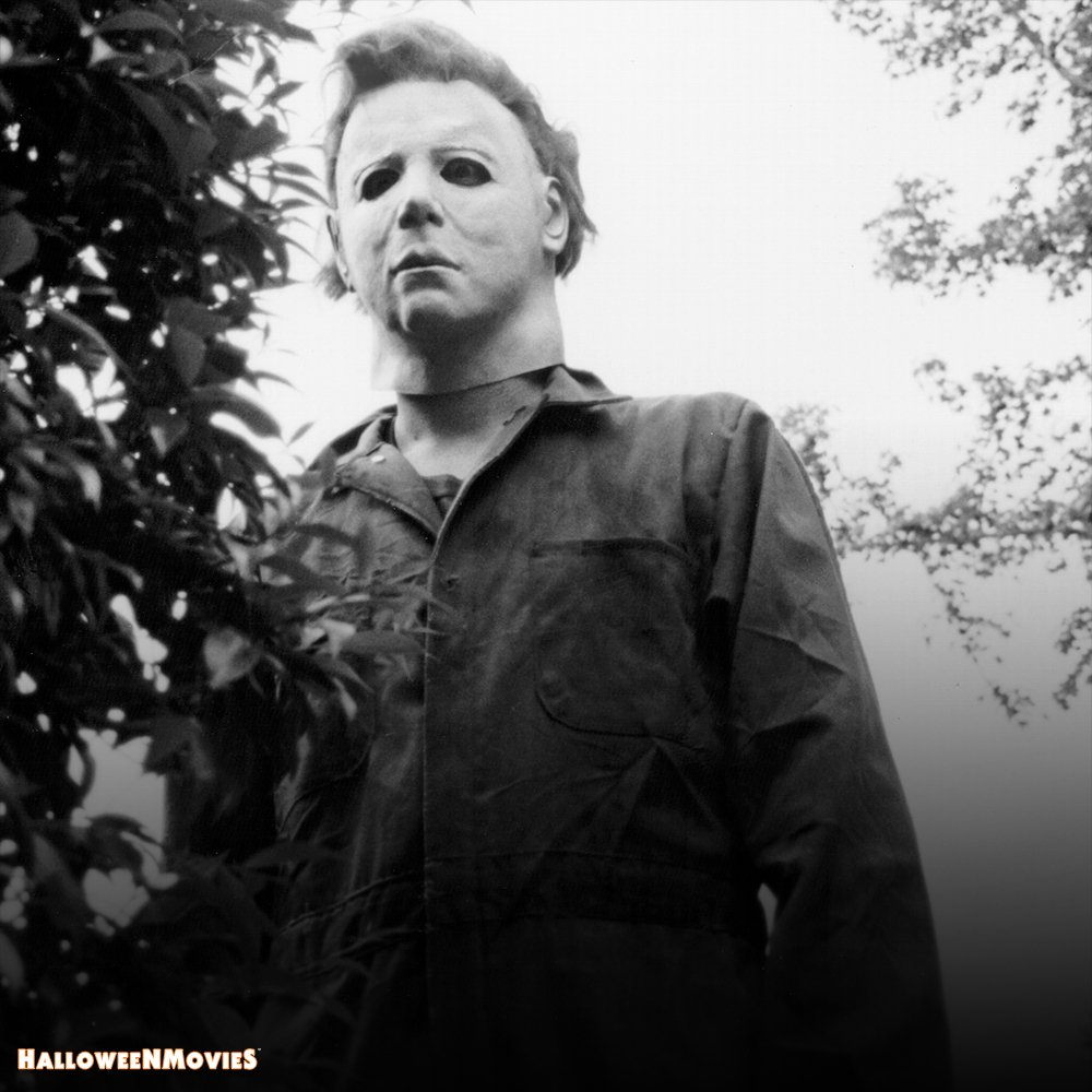 'I see you!' Happy #MyersMonday #Halloween 🎃 https://t.co/B65hfMp3ae