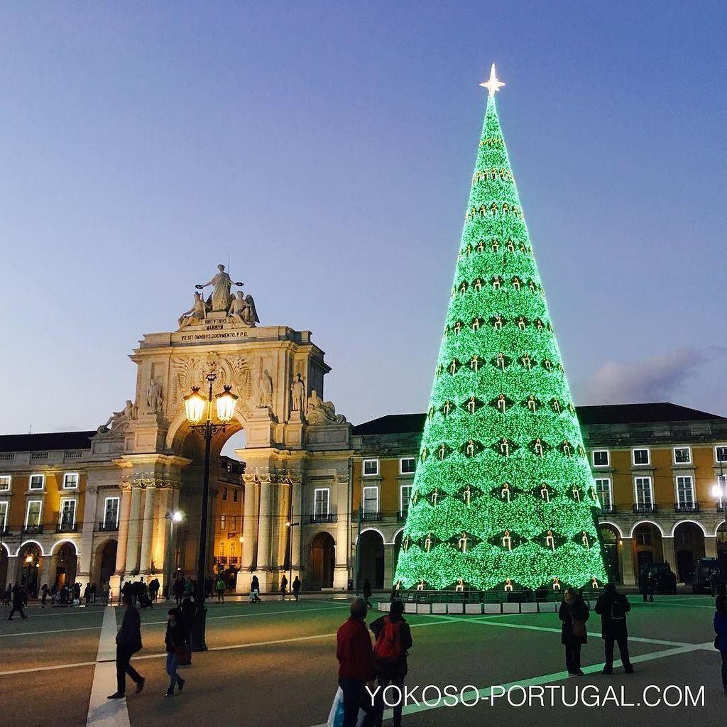 test ツイッターメディア - リスボンのコメルシオ広場のクリスマスツリー。 #リスボン #ポルトガル https://t.co/e9faWAHnM4
